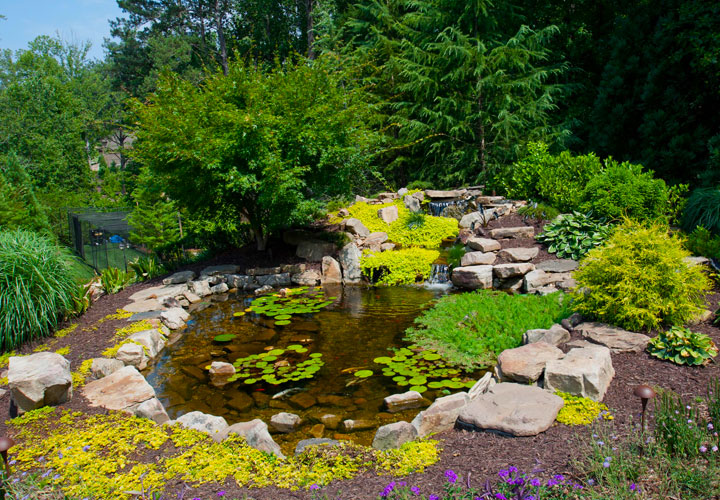 Landscape company in gwinnett county chelsea gardens landscape floral landscape ponds workwithnaturefo